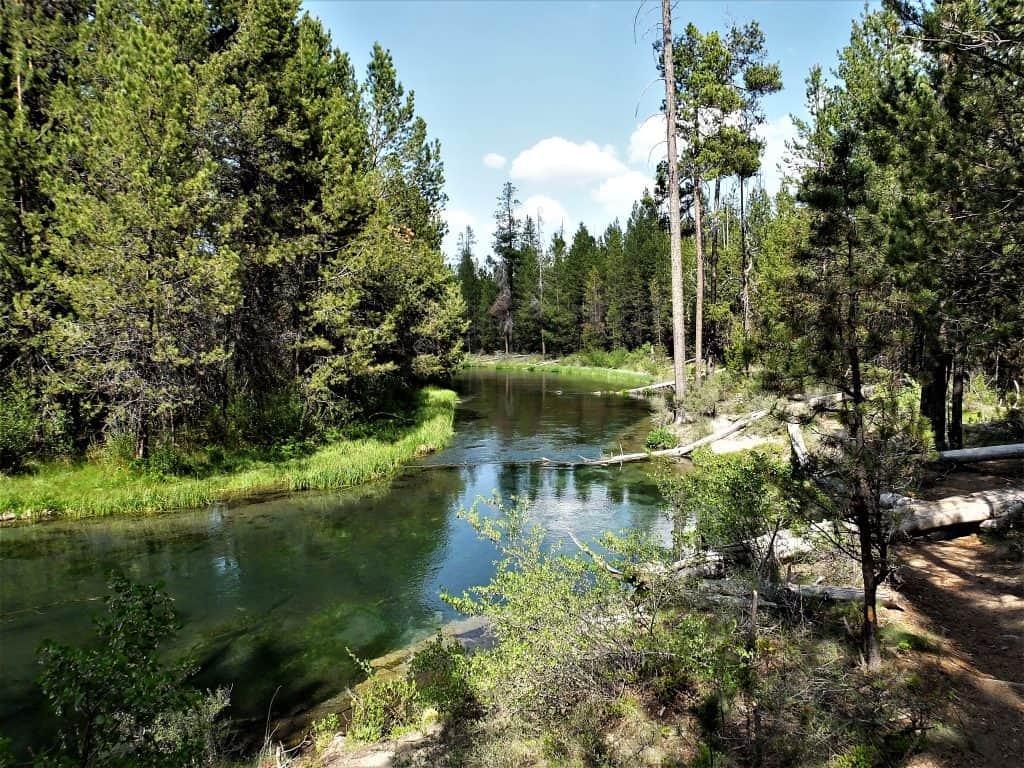 Fall River Near La Pine Oregon