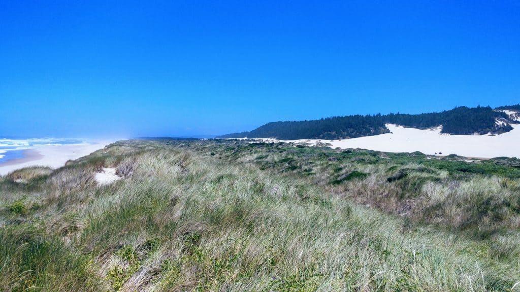 Umpqua Sand Dunes and Coastline Reedsport Oregon