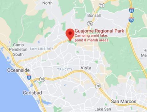 Campsite Review: Guajome Park Campground