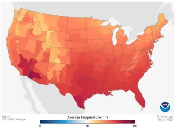 August average temperature