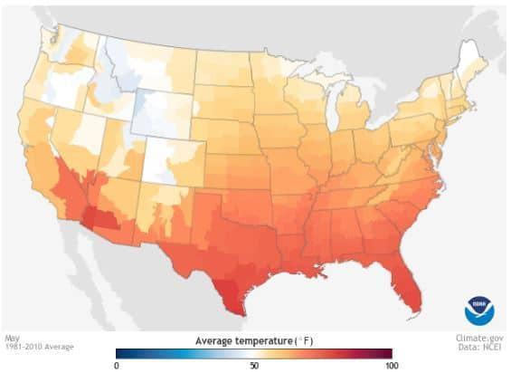 Average Temperature in May