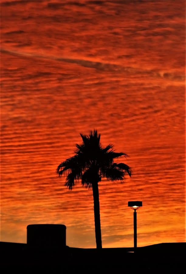 Sunset in the Valley of the Sun