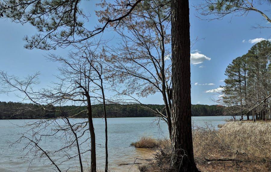 Bay Springs Lake