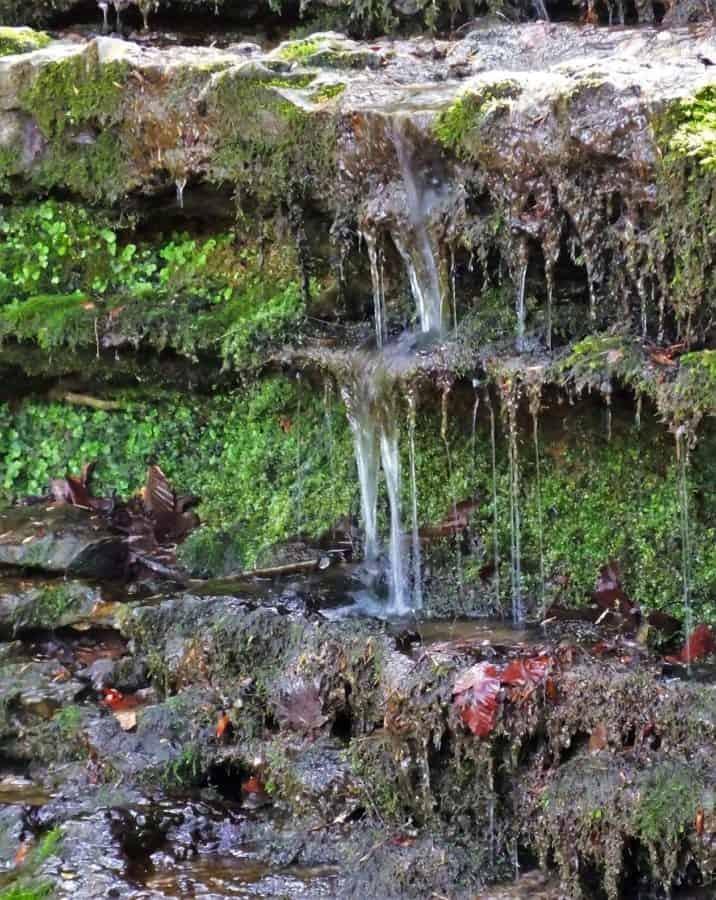 Small waterfall near Burgess Falls More Tennessee Waterfalls