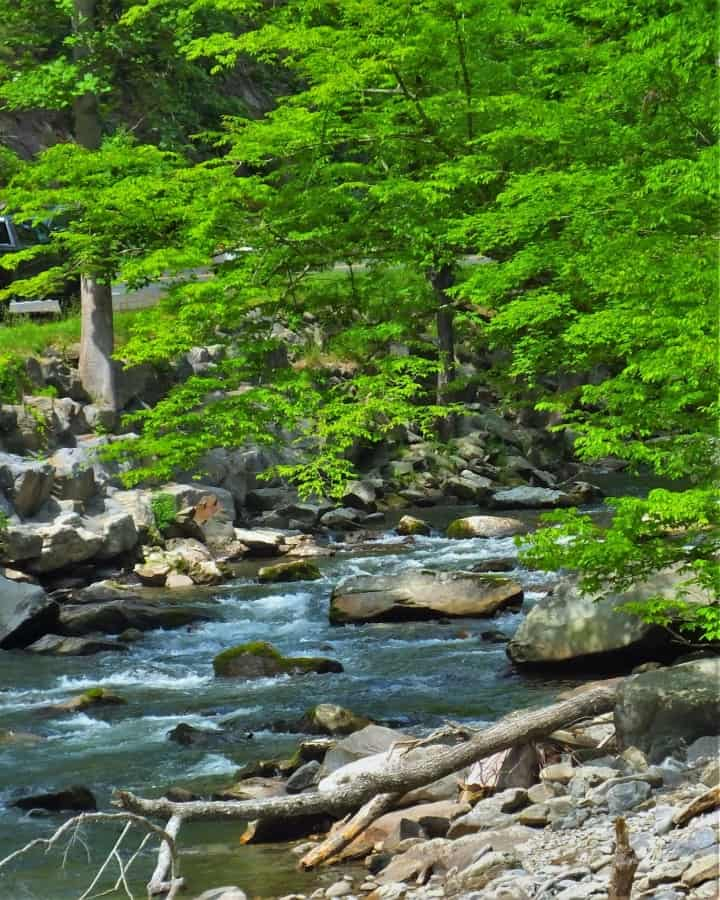 Little River near the Sink. A treasure in the Smoky Mountains.