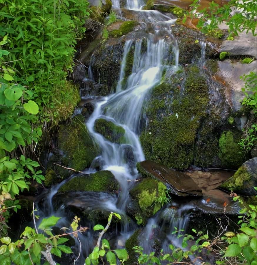 A treasure in the Smoky Mountains Fox Branch Falls Lower Cascade