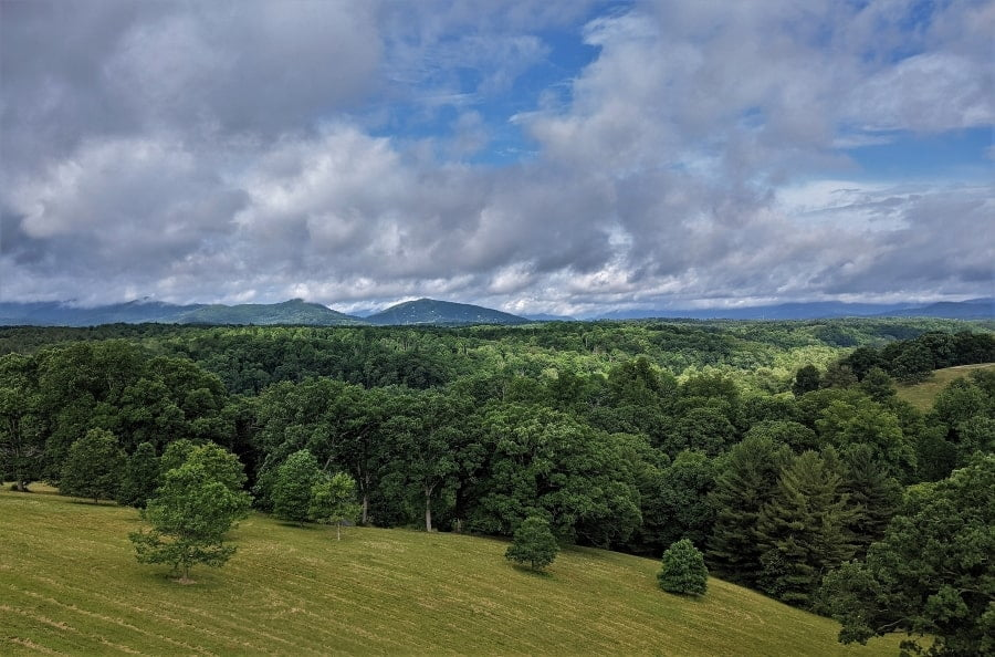 The area to the right of this view from the porch is the private deer meadow.