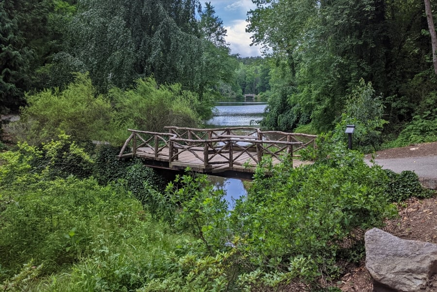 A rustic bridge on the path between the azalea garden and the waterfall.