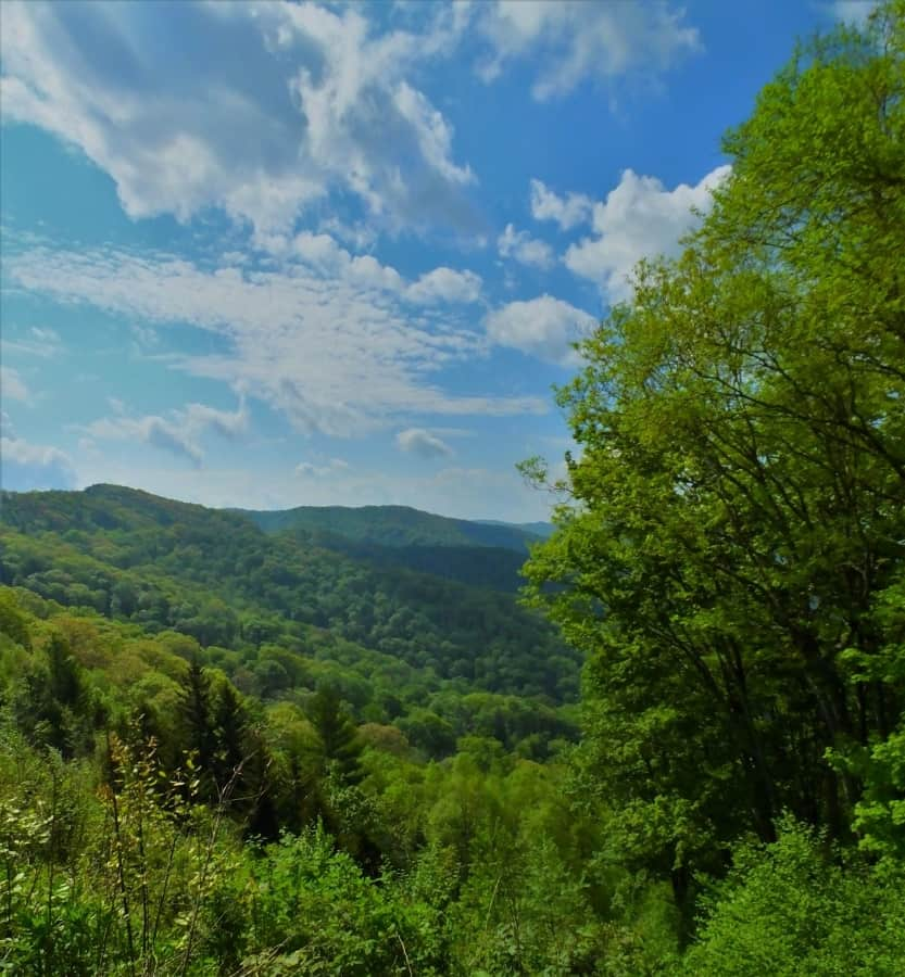 Valley view in the Smoky Mountains