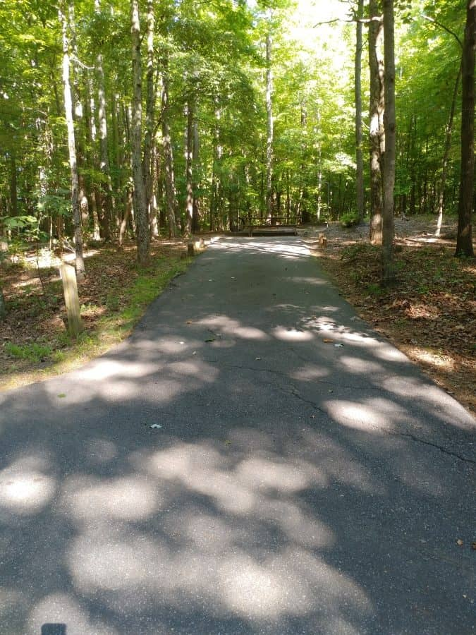 Lake Norman State Park Campground Site #17