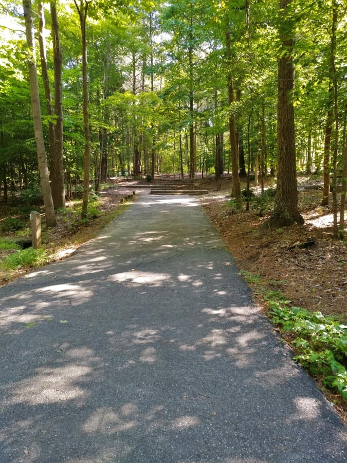 Lake Norman State Park Campground Site #7