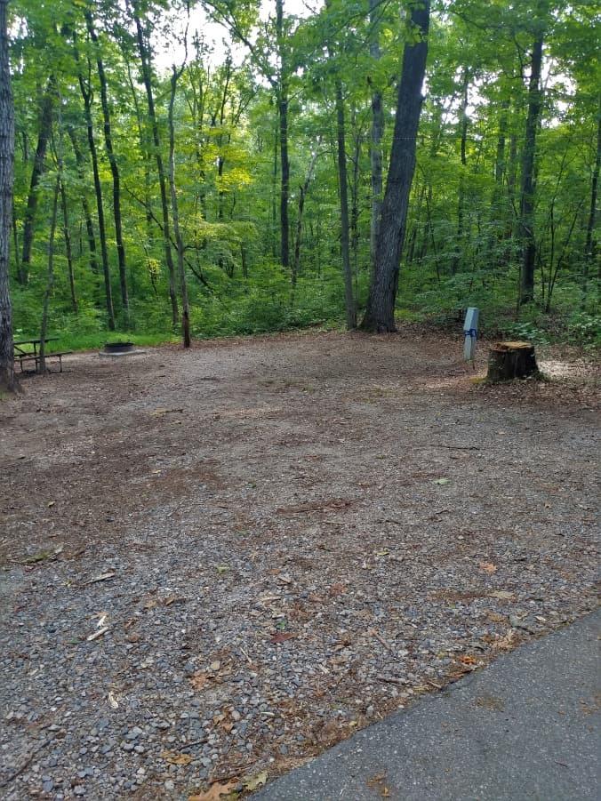 Typical site at Dan Nicholas Park