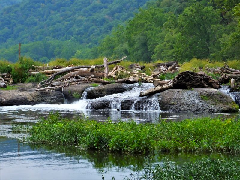 Logjam and water falls on the New River