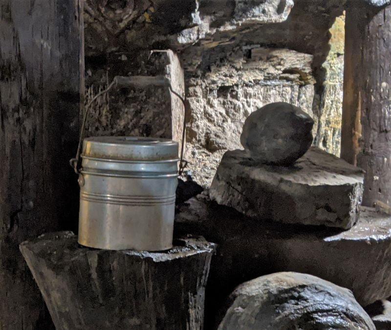 Lunch pail sitting on petrified tree stumps.